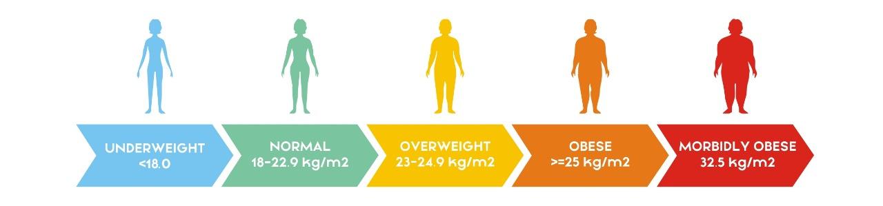 BMI, Body Mass Index, BMI Calculator as per Asian norms, How to calculate BMI, How to calculate body mass index, Calculate your BMI